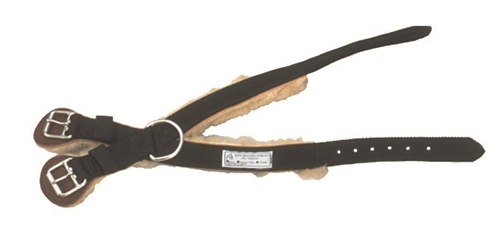 Breeding Hobbles Hock Strap for Average Size Mare
